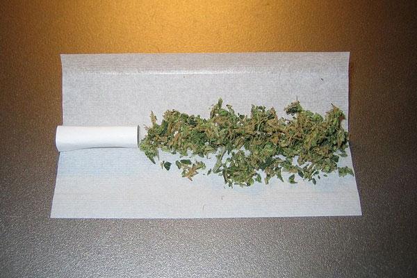 Top 5 meest gebruikte drugs in Nederland