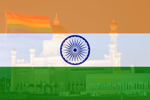 Grootste domoren ter wereld wonen in India (en wij zijn de slimbo's!)