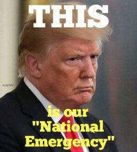 Donald Trump - National Emergency