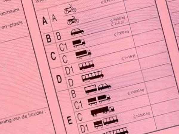 Hoeveel Nederlanders hebben een rijbewijs? Ruim 11 miljoen!