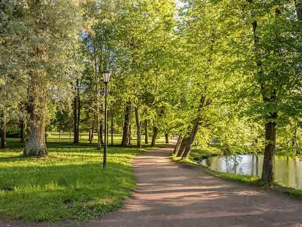 Meeste park per inwoner in Nederland: Amstelveen – De Top 10
