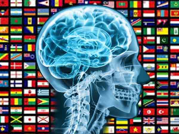 Gemiddeld IQ per land – De Top 187 en wij zijn best wel slim!