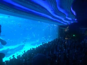 Grootste aquariums ter wereld - Chimelong Ocean Kingdom