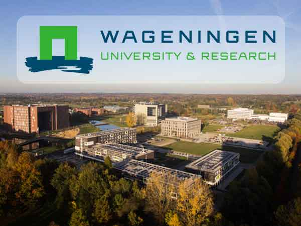 Beste Nederlandse universiteiten 2020 volgens Times Higher Education