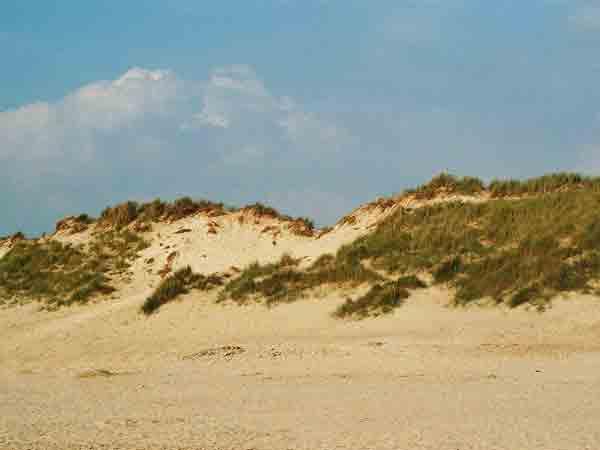 Nederlanders het gelukkigst in de duinen, aan het strand of op de hei