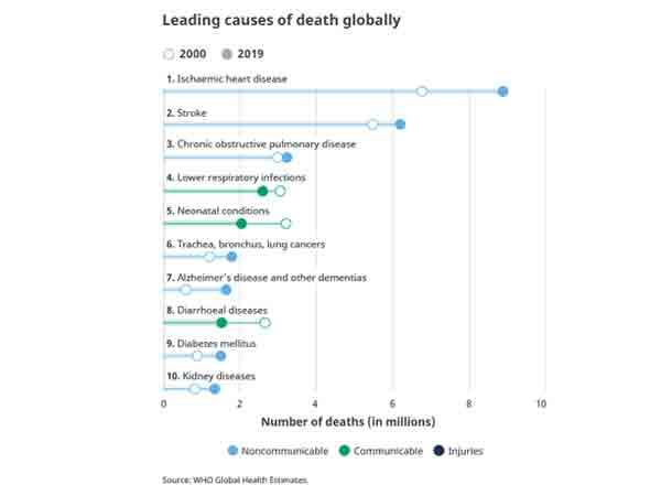 Belangrijkste doodsoorzaken wereldwijd 2019 – De Top 10