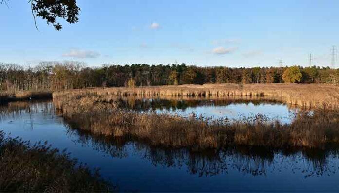 Top 10 Mooiste natuurgebieden van België