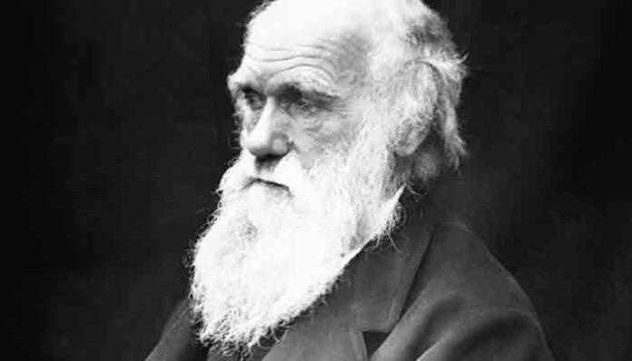 Charles Darwin: Zeven regels voor grote ideeën