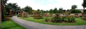 Jardin plantes roses - Lille