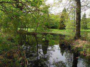 Parc de Bréquigny - Rennes