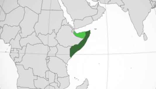 Somalië: Top 10 meest corrupte landen van Afrika 2021